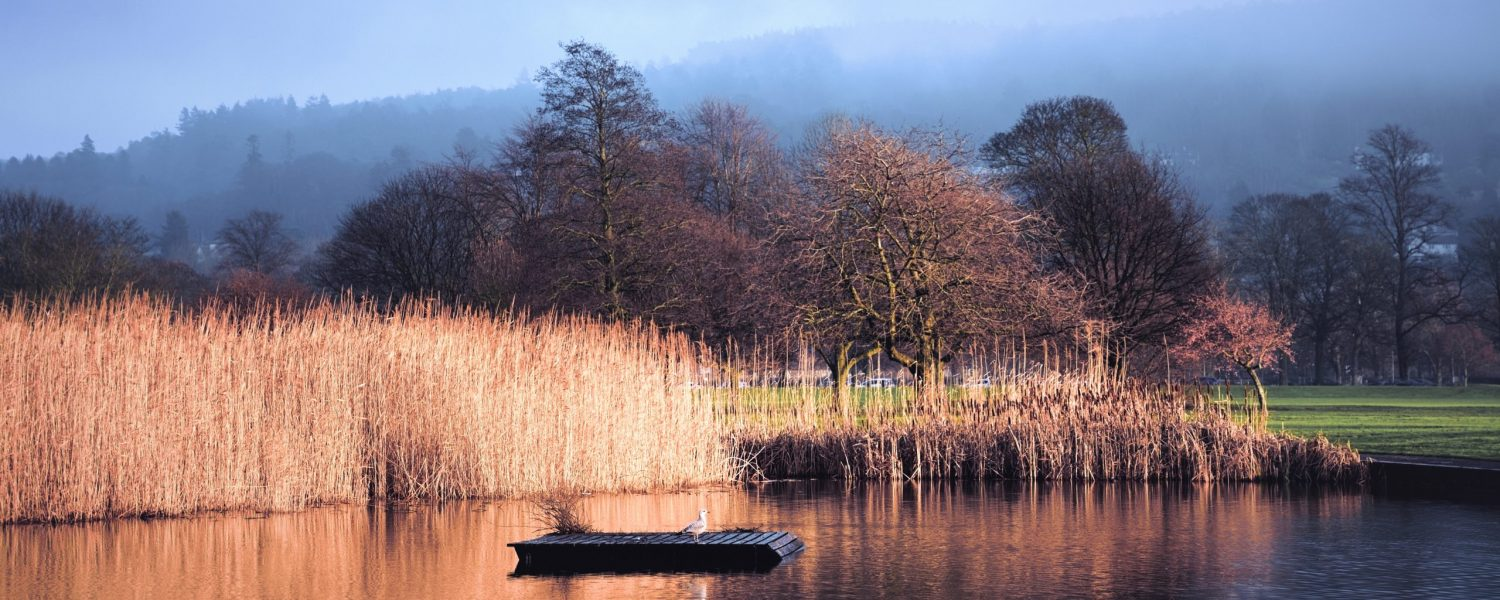 Perthshire Photographic Society